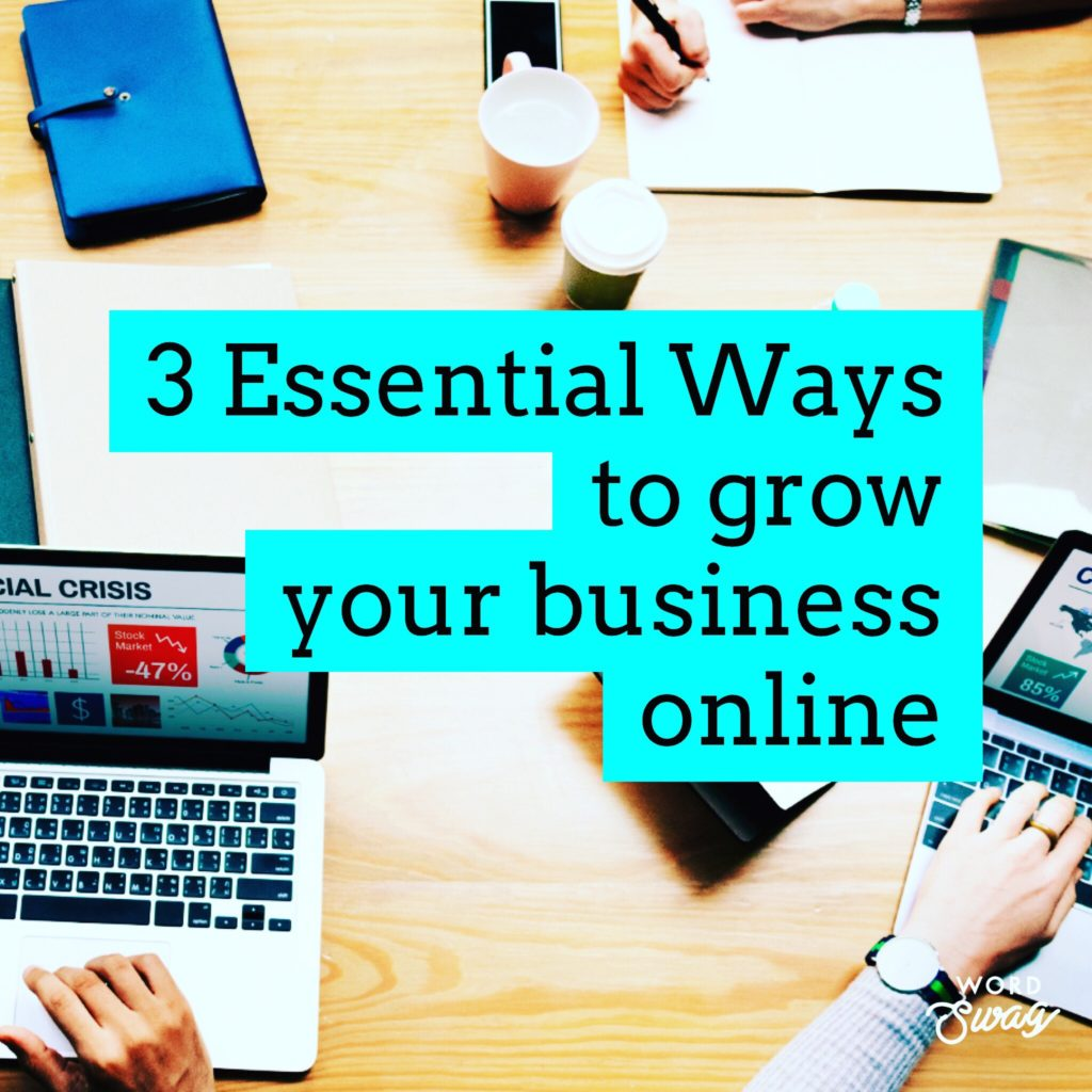 PPC Geeks Blog 3 Essential Ways to grow your business online 1024x1024 - Amy M