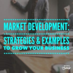 PPC Geeks Blog - Market Development Strategies & Examples to Grow Your Business